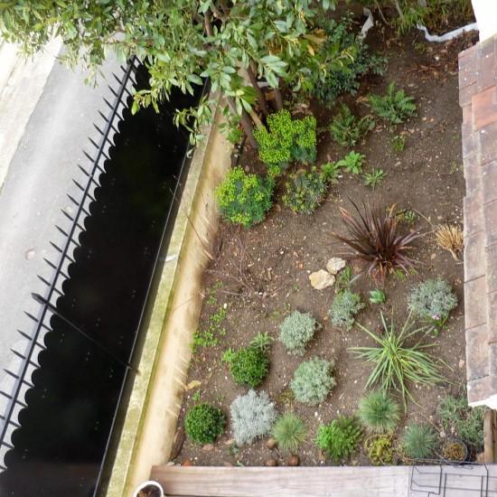 cour terrasse petit jardin